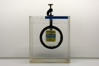 L6-12 MAGNIFYING LENS IN WATER