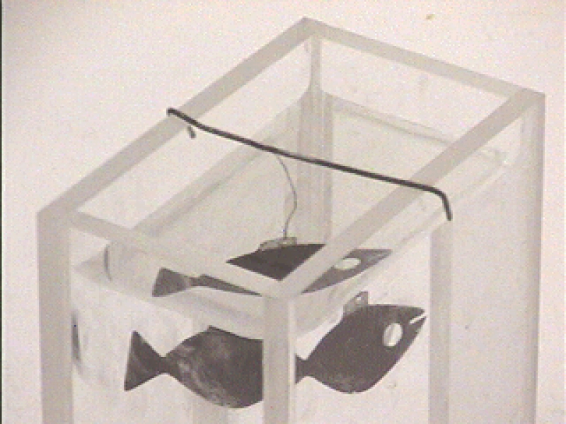 L4-05: REFRACTION IN FISH TANK - PORTABLE